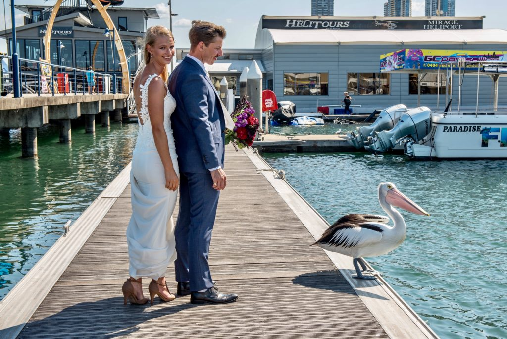 Gold coast cruises pop-up wedding event coordinator